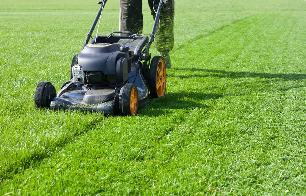 difference between an Electric vs Gas Lawn Mower
